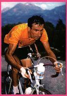 Cycliste - Cyclisme - RAPHAEL GEMINIANI - Maillot Jaune Tour 1958 - Sponsor - Pub - Ciclismo