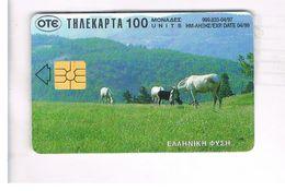 GRECIA (GREECE) -  1997 - HORSES     - USED - RIF.   15 - Greece