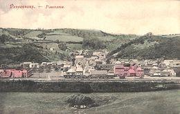 Nessonvaux - Panorama (train, Colorisée) - Trooz