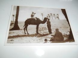B680  Tripolitania Un Sorso D'acqua Dopo La Marcia Non Viaggiata - Cartoline