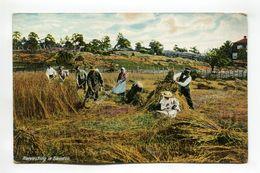 Harvesting In Sweden - Sweden