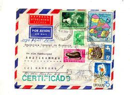 Lettre Recommandee Valense Sur Carte Faune Eau Etc   + Remarque Au Dos !! - Uruguay