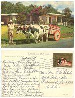 Costa Rica 1975 Postcard Ox Cart, San Jose To U.S., Scott C604 - Costa Rica