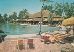 CARTOLINA: (LT) SABAUDIA - HOTEL BAIA D'ARGENTO - LA PISCINA E IL CAPANNO (MOVIMENTATA) - F/G - COLORI -VIAGGIATA -LEGGI - Italia