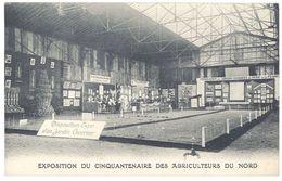 Cpa Exposition Du Cinquantenaire Des Agriculteurs Du Nord ( Lille 59 ) - France