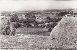 MONT-DE-L'ENCLUS : Vue Sur Ruyen - Zonder Classificatie