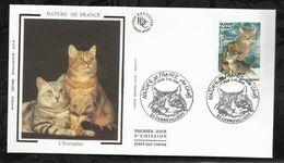 NATURE DE FRANCE . LES CHATS .  02 OCTOBRE 1999 . GENNEVILLIERS . - 1990-1999