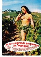 """Je Ne Comprends Pas Pourquoi On Manque De Vendangeurs!, Série """"A L'ombre Des Ceps"""", Ed. CIM 1970 Environ - Humour"""