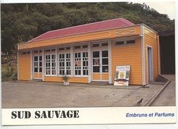 Ile De La Réunion Plaine Des Graigues Saint Joseph : Maison Du Curcuma - Sud Sauvage (cp Vierge) - La Réunion