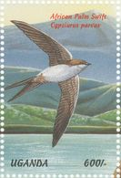 Ouganda. Uganda. 1999.  Martinet Des Palmes (Cypsiurus Parvus) - Swallows