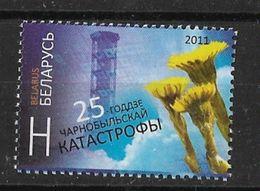 BELARUS 2011  25 Years Tjernobil Disaster - Umweltverschmutzung