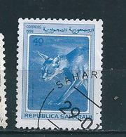 N° 1998D Caracal Caracal TIMBRE AFRIQUE Sahara Occidental (1998) Oblitéré - Timbres