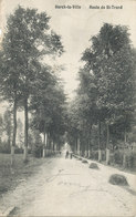 Herck-la-Ville - Route De St-Trond - 1908 - Herk-de-Stad