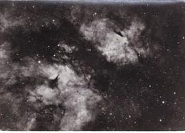Postcard Nebulosities In Constellation Of Cygnus Mount Wilson / Palomar Observatories London Planetarium My Ref  B22306 - Astronomy