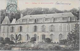 SEINE Et MARNE-Château De Montanglaust-MO - Non Classés
