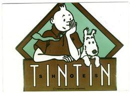 TINTIN  HERGE   PERSONNAGE DE TINTIN ET MILOU  -  SANS EDITEUR  AU DOS - Stripverhalen