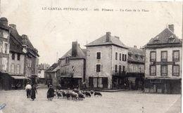 PLEAUX UN COIN DE LA PLACE (MOUTONS) - France