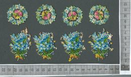 CHROMO DECOUPIS GAUFRÉ / LOT DE 8 MOTIFS SUR LE MYOSOTIS - Flowers