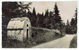 ST LAURENT Du JURA / En GRANDVAUX  -La Savine, Route De Morez - Voyagée 1958 - Format 9x14- Bon état - Francia