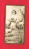 Image Religieuse & Pieuse & Généalogie Communion De M. T. ACHARD En 1935 Eglise St Pierre TINCHEBRAY Bouasse Jeune - Devotion Images