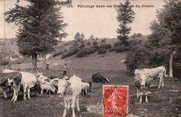 ENVIRONS DE PONTARLIER: Pâturage Dans Les Montagnes Du Doubs. Animée. - Pontarlier