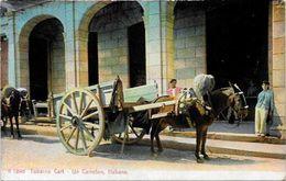 CPA Cuba Non Circulé Métier Type - Cartes Postales