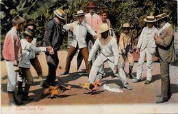 CPA Cuba Non Circulé Métier Type Combat De Coqs - Cartes Postales