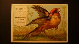 Liebig Sang. Nr. 64 Image  Oiseaux Grand Fig. Chardonneret - Liebig