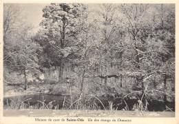 CPM - Maison De Cure De SAINTE-ODE - Un Des étangs Du Domaine - Sainte-Ode