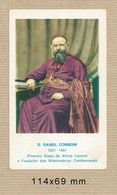 #06 SNT Daniel Comboni - Devotion Images