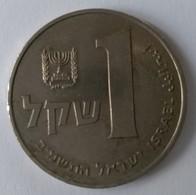 Monnaies - Israel - 1 Sheqel 1981 - - Israel