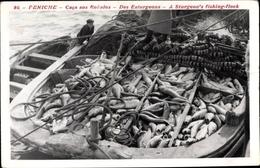 Cp Peniche Portugal, Caca Aos Robalos, Des Esturgeons, A Sturgeon's Fishing Flock, Fischerboot - Professions
