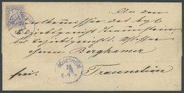 BAYERN 25Xa BRIEF, 1870 7 Kr. Mattultramarin, Wz. Enge Rauten, Blauvioletter K1 ROSENHEIM, Kabinettbrief Nach Traunstein - Bavaria