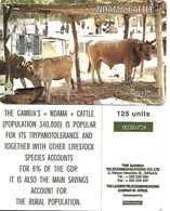 @+ Gambie - Vaches 125 Unités - Ancien Logo Schlumberger - Gambia