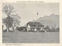 Suisse VD TERRITET Le Grand Hôtel Et Hôtel Des Alpes  Golf Links Et Club House.......G - VD Vaud