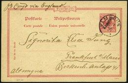 KAMERUN P 2 BRIEF, 1898, 10 Pf. Karmin, Stempel KAMERUN, Mit Rückseitiger Zeichnung Ein Afrikanischer Traum, über Fr. Co - Colony: Cameroun