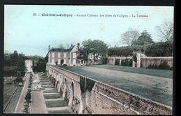 45, Chatillon Coloigny, Ancien Chateau Des Sires De Coligny, La Terrasse - Chatillon Coligny