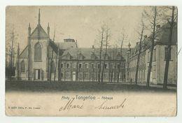Tongerloo  *  Abdij Van Tongerloo - Abbaye - Westerlo