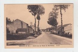 52 - BIESLES / ENTREE VUE SUR ROUTE DE BOURBONNE - Autres Communes