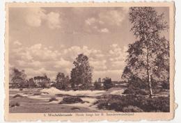 Wechelderzande:Heide, Sniederswandelpad. - Lille