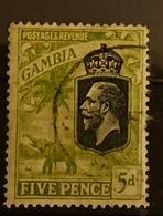 Gambie - 1922 YT 100 5d Georges V Elephant Oblitéré - Gambie (...-1964)