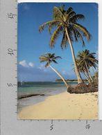 CARTOLINA VG FRANCIA - GUADELOUPE Saint Francois - Plage Des Raisins Clairs - 11 X 16 - ANN. 1993 - Otros