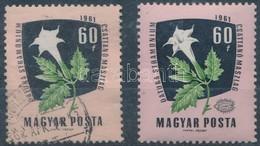 ** O 1961 Gyógy- és Ipari Növények 60f Tévnyomat, A Szürke Szín és A Termés Hiányzik (150.000) - Timbres