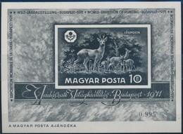 ** 1971 Vadászati Világkiállítás Feketenyomat Blokk (80.000) - Timbres
