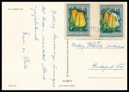 1954 Gyümölcsök 40f Erősen Eltolódott Offszet Színnyomatokkal, Támpéldánnyal 1971-ben Postázott Képeslapon / Mi 1387, Sh - Timbres