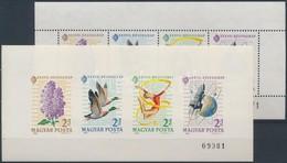 ** 1964 Monográfia Kisívpár (12.000) - Timbres
