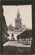 La Giralda Desde El Patio De Banderas, Sevilla, C.1940s - HAE Foto Tarjeta - Sevilla
