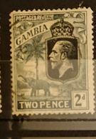 Gambie - 1922  2d Georges V Elephant Oblitéré - Gambie (...-1964)