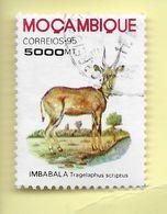 TIMBRES - STAMPS - MOZAMBIQUE / MOÇAMBIQUE - 1995 - IMBALALA - Tragelaphus Sciptus - TIMBRE OBLITÉRÉ - Mozambique