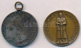 Maugsch Gyula (1882-1945) 1929. 'Pest-Pilis-Solt-Kiskun Vármegye' Ezüstözött Br Díjérem Mellszalag Nélkül (30mm) + Kalló - Unclassified